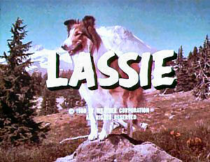 Lassie syndicated titles