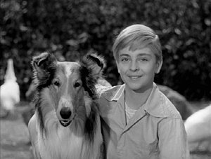Lassie and Jeff #2