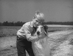 Lassie and Timmy #2