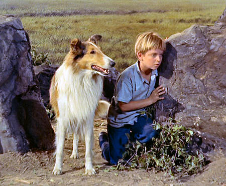 Lassie Web Episode Guide Season 1