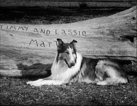Jack Warden Lassie Web: Epis...